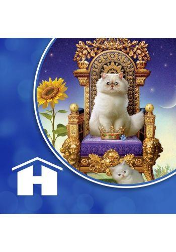 Animal Tarot Cards App
